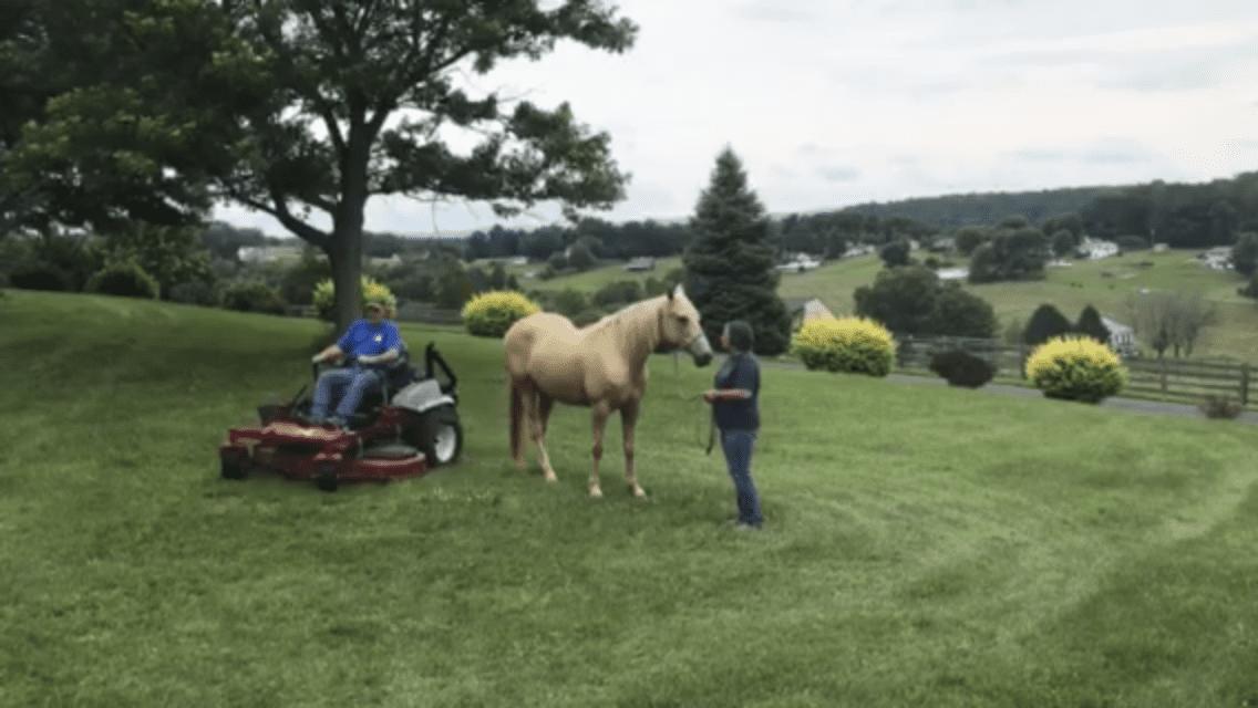 Lawn Mower around Becca